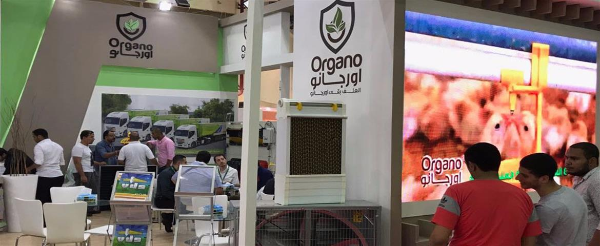 2017 Egypt Agrena Exhibition